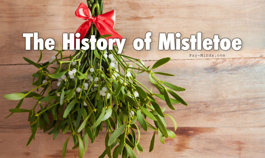 The History of Mistletoe
