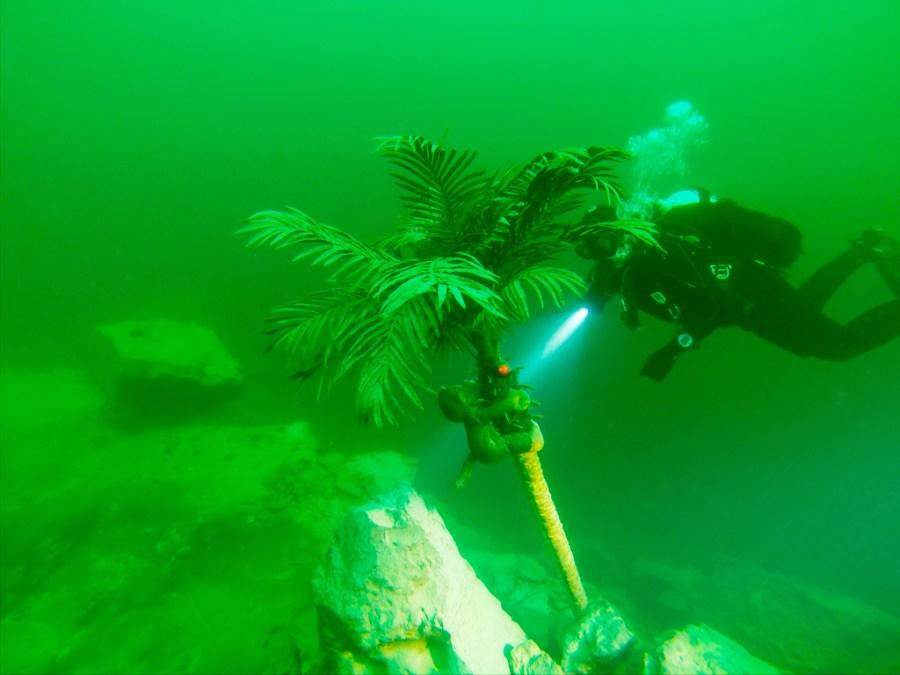 Małpka podwodna (nawet dwie ;p) / zrzut z kamery