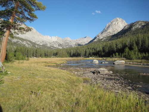 McClure Meadows
