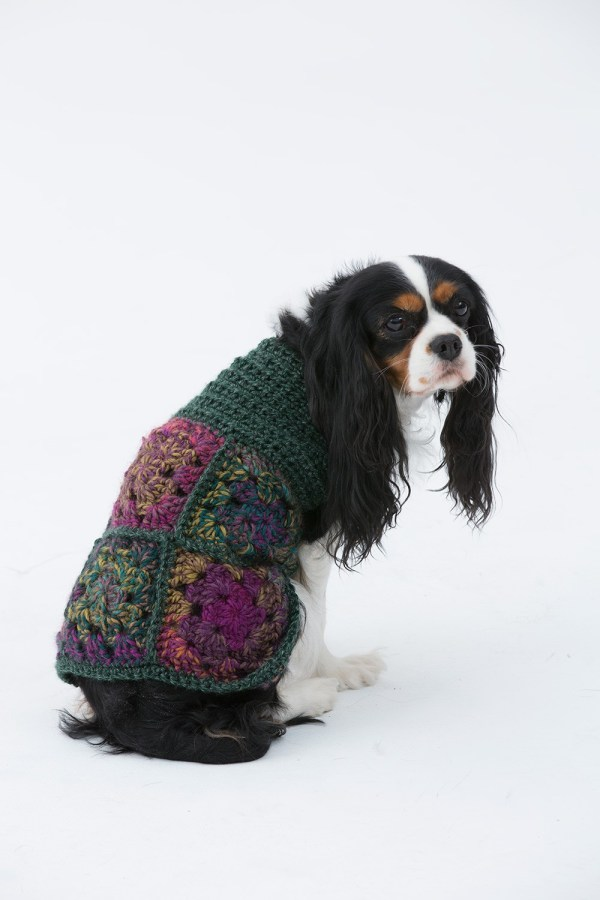 Free Dog Sweater Crochet Patterns - Psychedelic Doilies