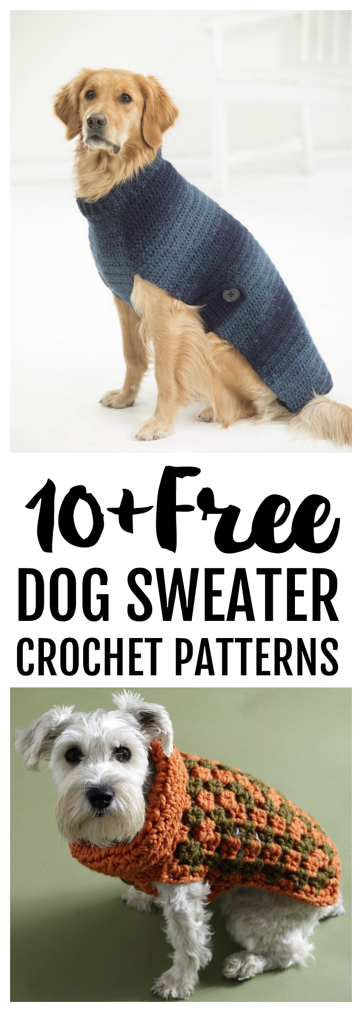 Free Dog Sweater Crochet Patterns Psychedelic Doilies