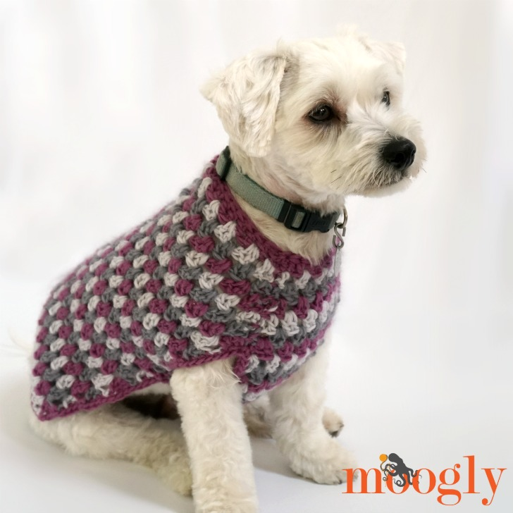 Free Dog Sweater Crochet Pattern By Moogly Psychedelic Doilies