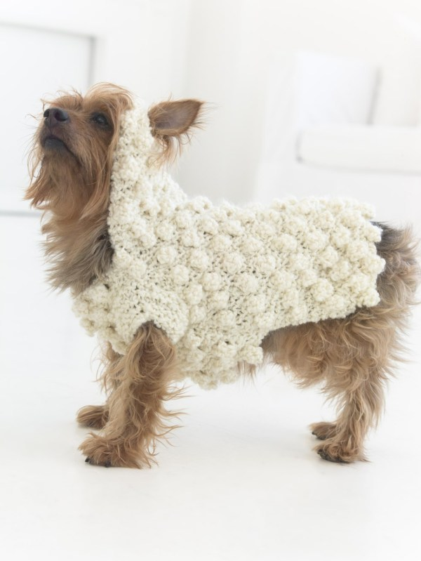 Bobble stitch dog sweater free crochet pattern for small dogs.