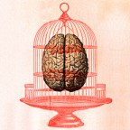 caged brain and heart square
