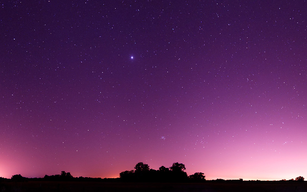 Have you ever been drawn in by a single star in the sky?