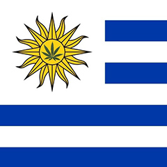 Uruguay approves world's first national market for cannabis