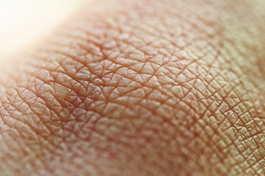 A web of lines on the skin of my knuckle.
