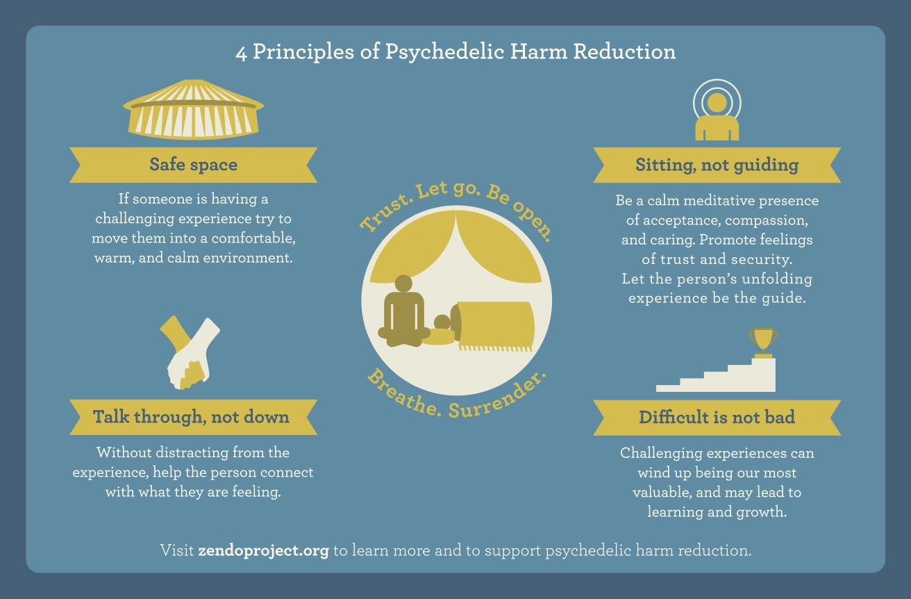 Hand In Hand How Psychedelic Harm Reduction Is Making A Difference Now