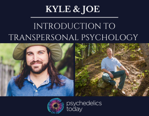 Psychedelic Integration Consulting with Kyle Buller and Joe Moore from Psychedelics Today