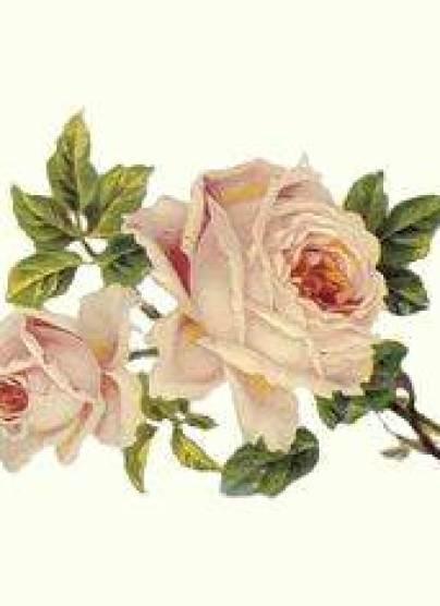 Psychics and Tarot cards