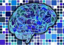 Hack Your Brain