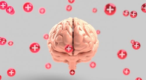 Best Supplements for Brain Health and Memory