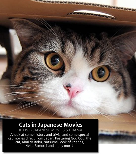 Cats in Japanese Movies