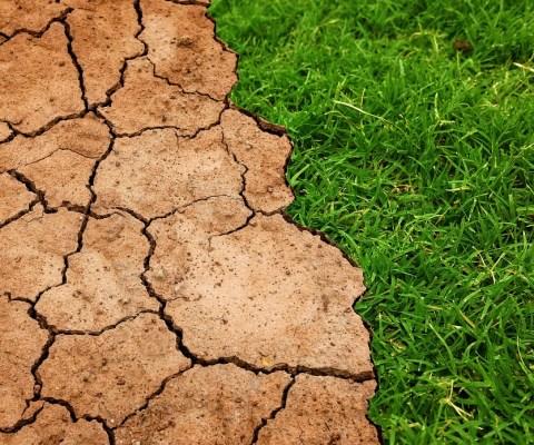 L'éco-anxiété : quand l'avenir de la planète vous angoisse
