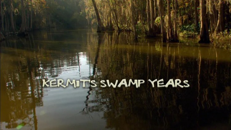Title_swampyears