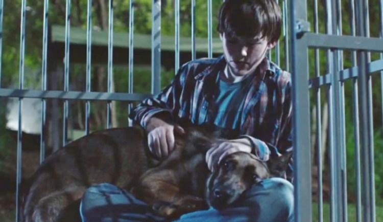 Max dog movie 2015