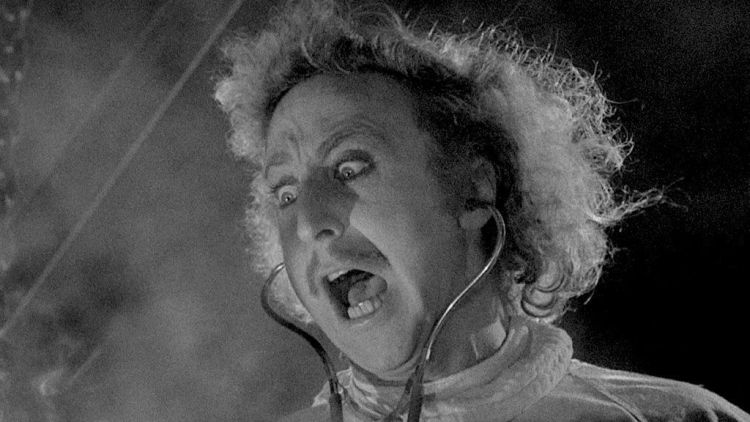 young-frankenstein-03