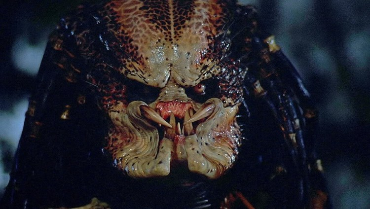 predator-04