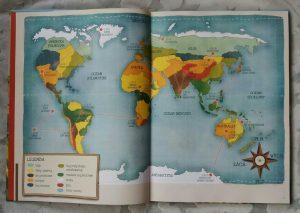 20180120_095412-1554679364-257x300 Gdzie się chowa śnieżna sowa? Znajdź zwierzęta na wszystkich kontynentach.