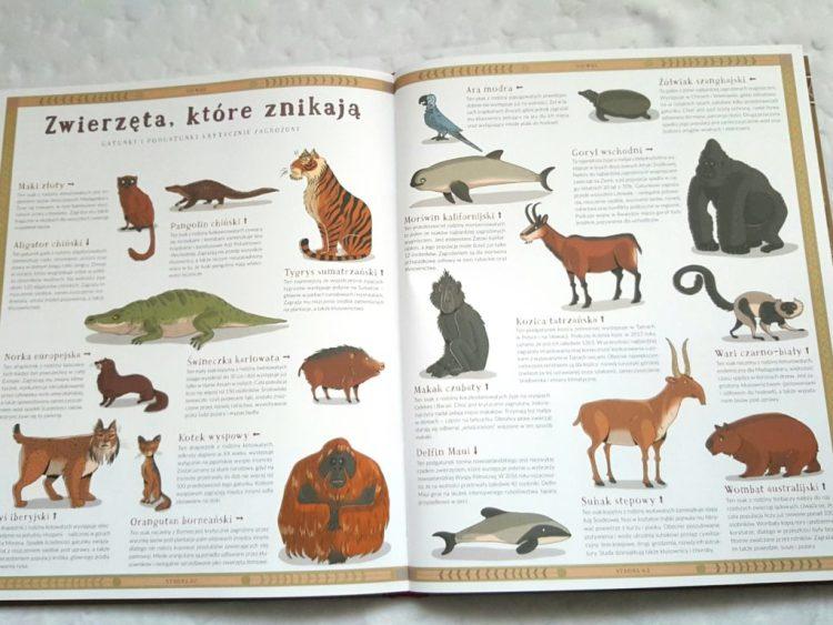 20181111_214834151059317-225x300 Zwierzęta, które zniknęły. Atlas stworzeń wymarłych.Nasza Księgarnia. 11/2018