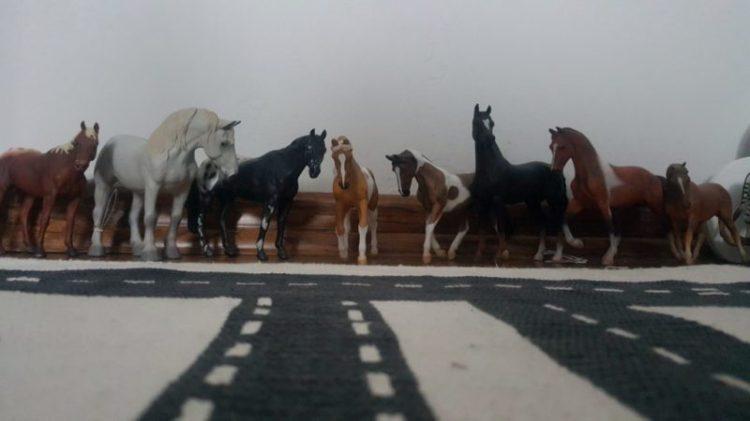 20190206_184916-11911845099-1024x576 Konie – realistyczne spotkanie z naturą w jednej dłoni  (Collecta).  POMYSŁY NA ZABAWĘ
