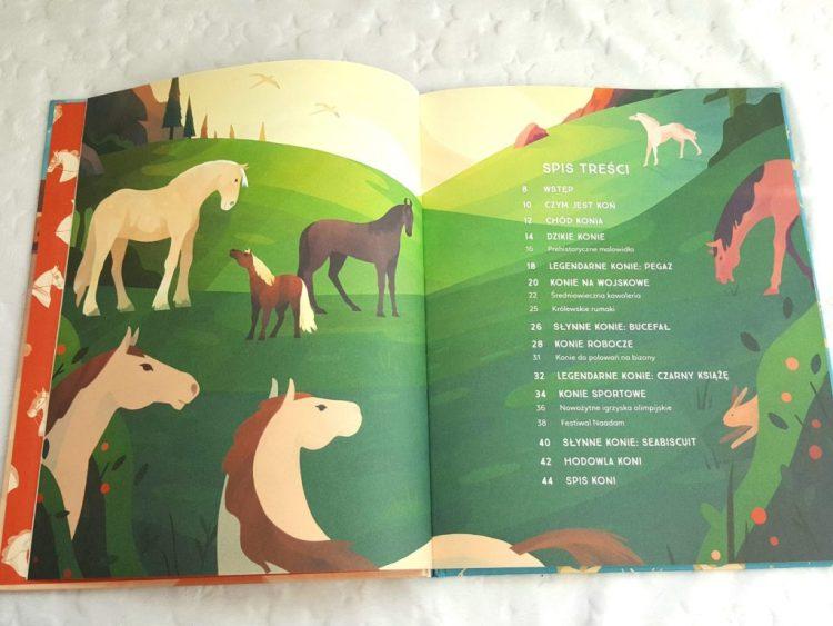 20190415_093728368466911-1024x768 Niezwykłe książki Iris Volant i Jarom Vogel: KONIE i Łodzie. Zielona Sowa 2019. Od 6+