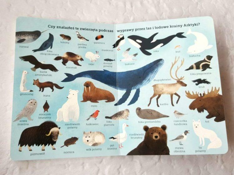 20191025_215931348963825-1024x768 Akademia mądrego dziecka. Odkryj przyrodę: Na farmie, W Arktyce, W oceanie. EGMONT. Jesień 2019, 0+