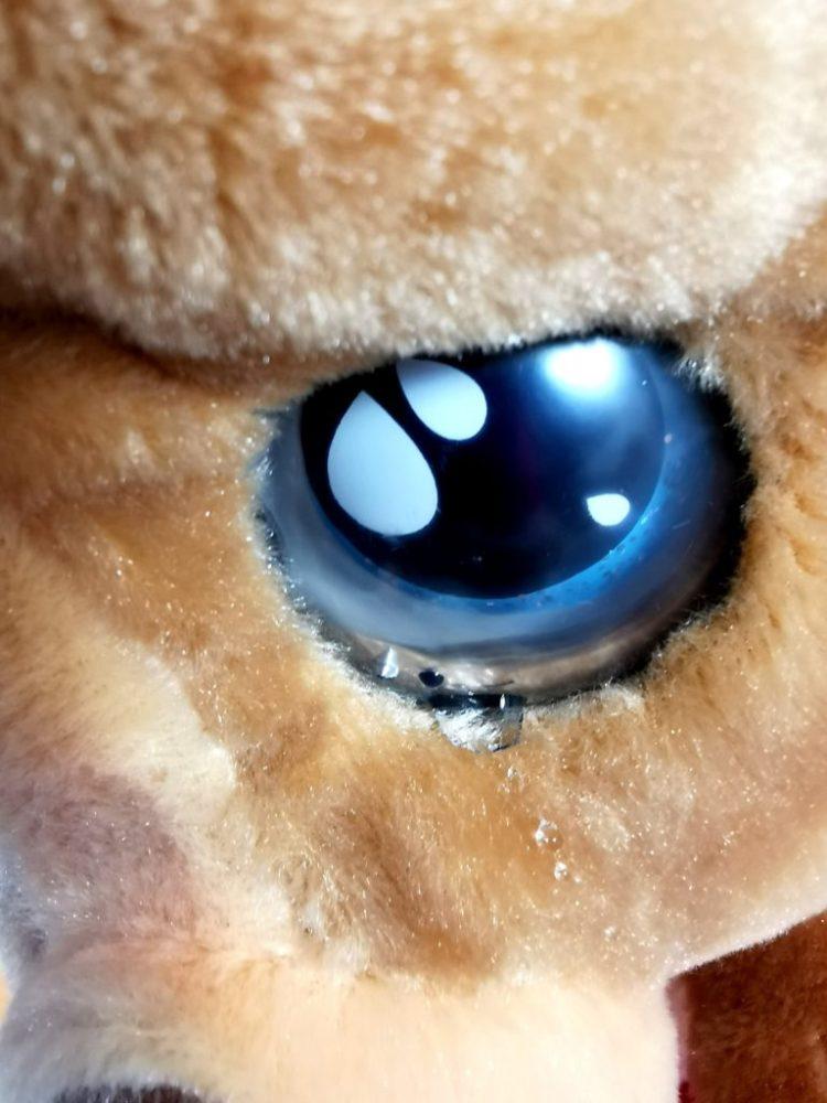 wp-1605648567357-1024x1024 Pomysł na prezent: Cry Pets Chory Funkcyjny Piesek u Weterynarza 3+