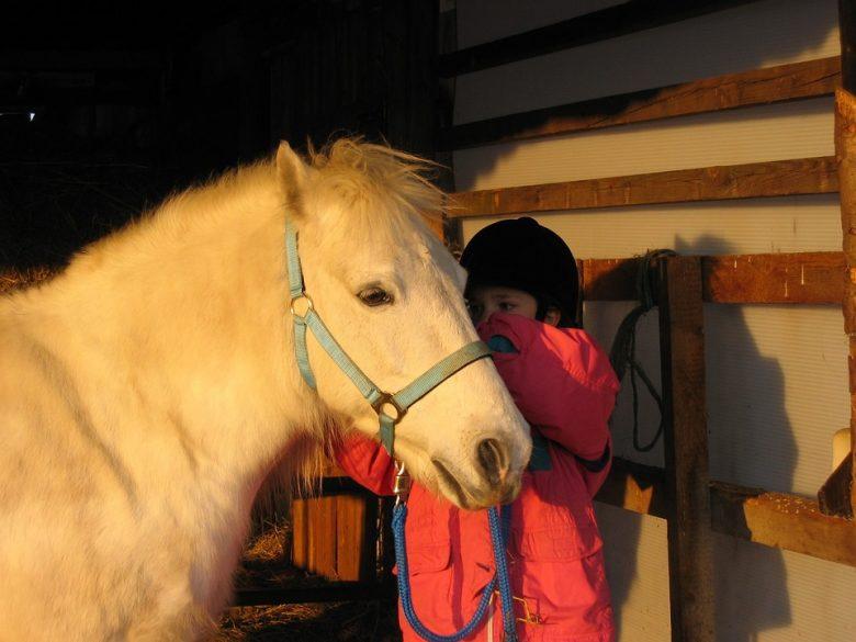 Activité sportive pour enfants : L'équitation 1