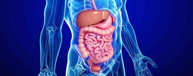 gastroenterite-virale-prevenir-les-maladies-infectieuses