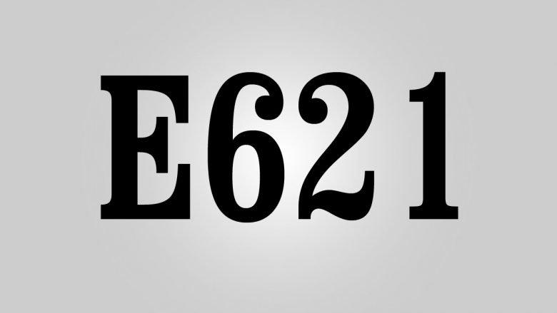 Qu'est ce que le E621 exhausteur de gout : Est-ce dangereux ? 1