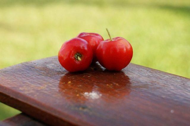 Fruit d'acérola