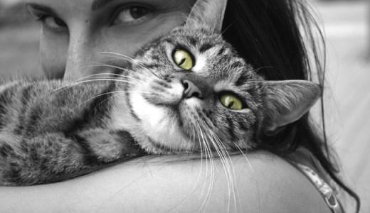 小悪魔的!? 猫系女子の性格と行動パターン5つ