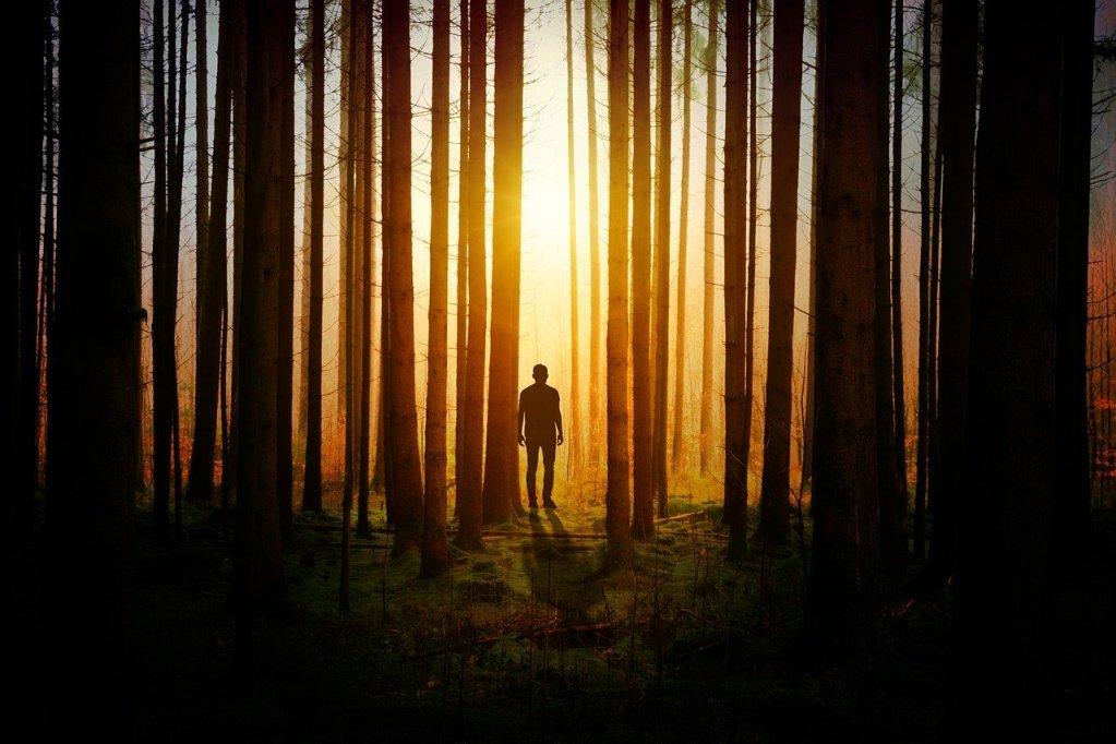 homme dans une forêt angoissante