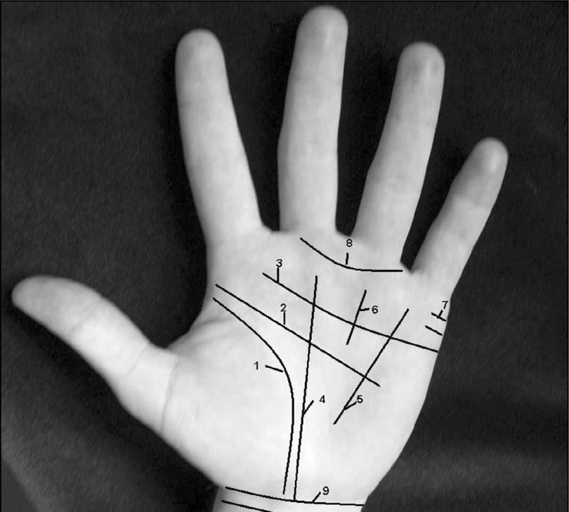 linie na dłoni