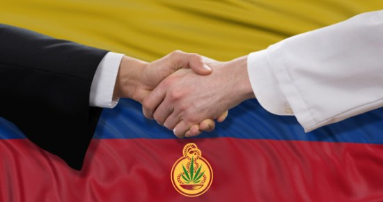 Colombia legalized the use of medicinal cannabis - Sensi Seeds blog