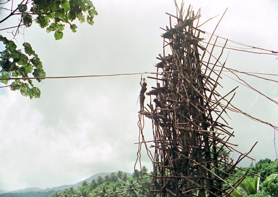 "'The Tower', Pentecost Island Vanatu"", by Paul Stein"