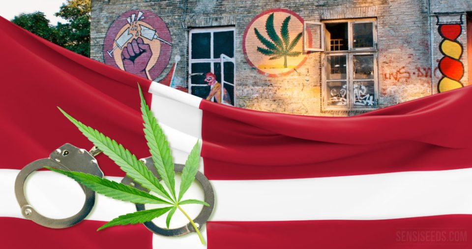 Image result for Cannabis Laws in Denmark