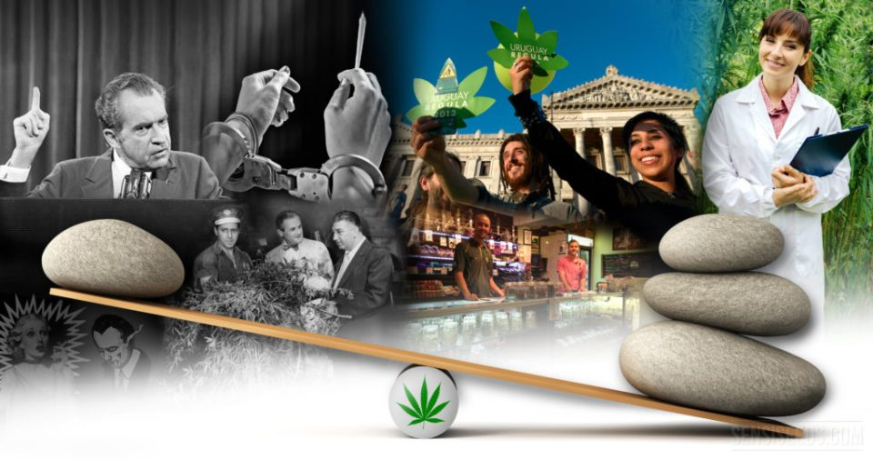cannabis-legalisation-are-we-at-a-tipping-point-4k