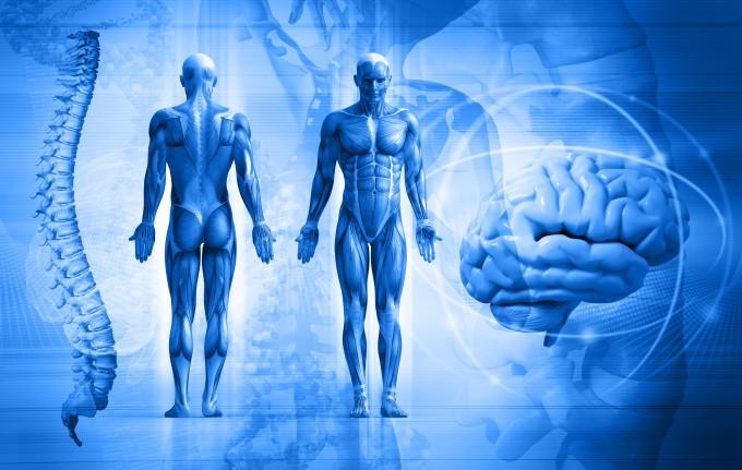un flux larg în boala umană