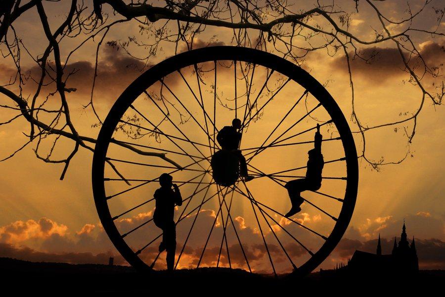 Жизнь по-кругу