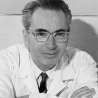 Viktor Frankl:  drugs, LSD and subjective vs. objective meaning (2020)