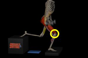 膝の位置2