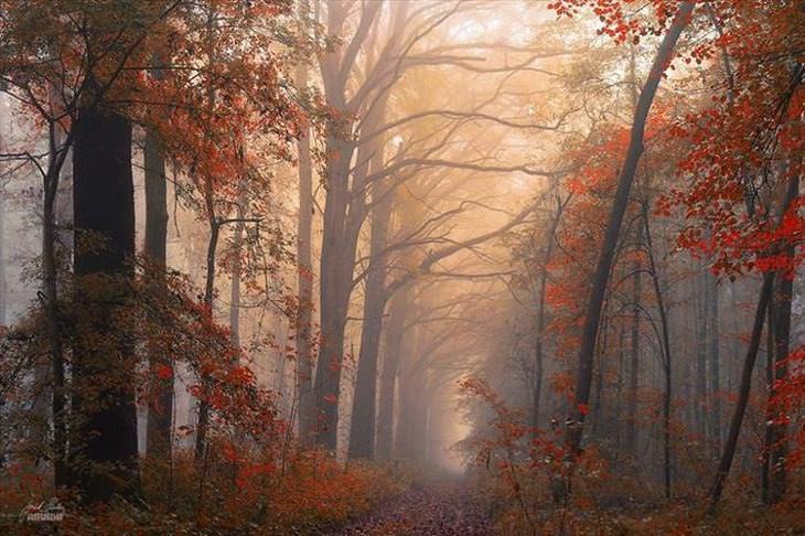 A beleza do outono no leste europeu