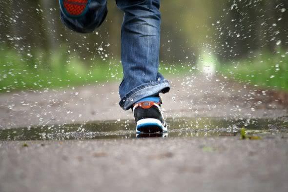 Run, Forrest, Run