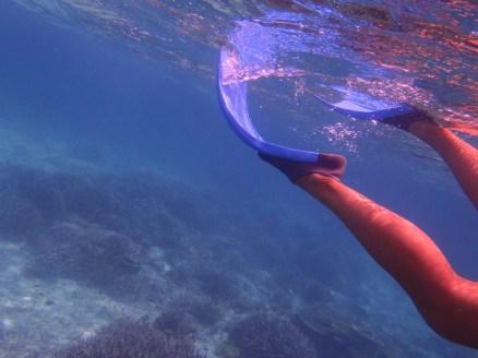 Snorkeling nas Ilhas Maldivas, por Packing my Suitcase