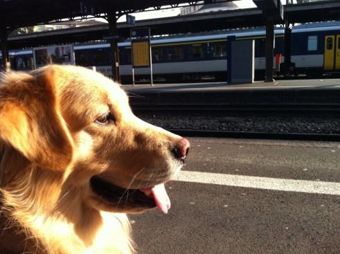 Esperando o trem em Genebra