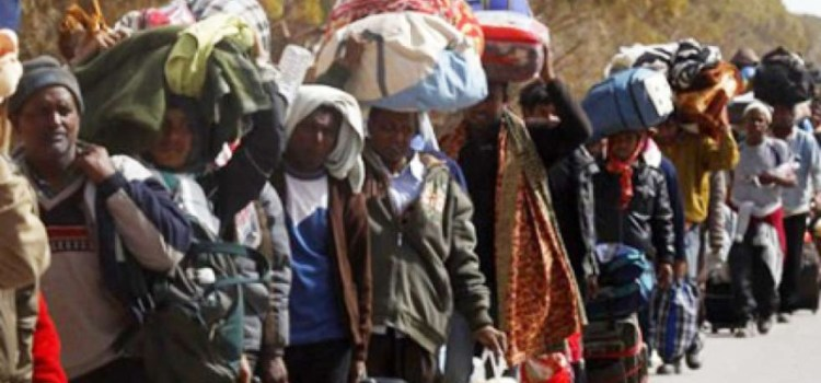 Boko Haram: 395 displaced Nigerians live in Niger – Official