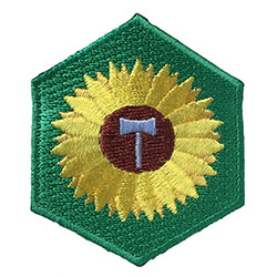 Sunshine Merit Badge Alt