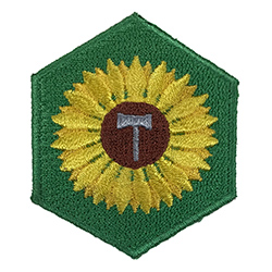 Sunshine Merit Badge